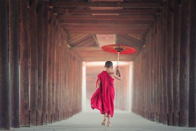 jeune moine ombrelle