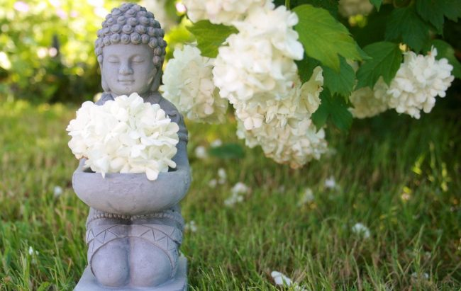 Buddha fleur